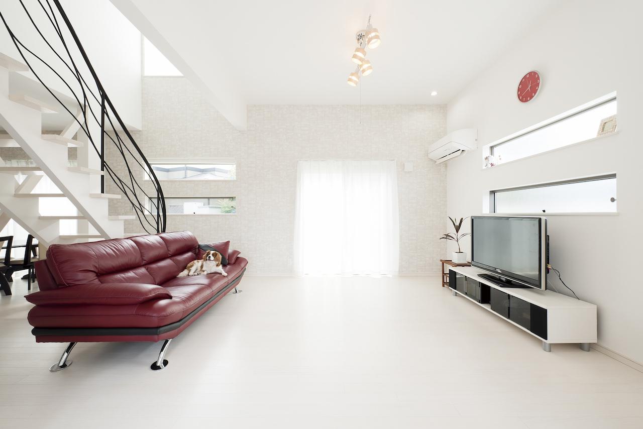 三陽工務店/白い無垢床の家/ペットの家